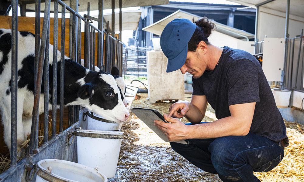 uControl für den Einsatz in der Mengen- und Produktivitätskontrolle der Landwirtschaft_Tierproduktion
